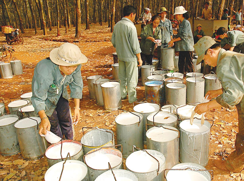 В каком городе производство матрасов аскона